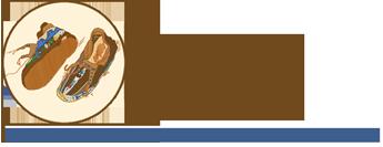 Wisdom Steps Logo